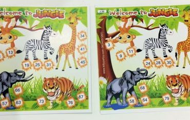 Animal/Jungle Kitty Party Theme
